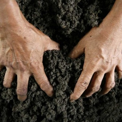 Ini Caranya Bikin Tanah Enak Dimakan!