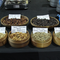 Klasik Beans, Koperasi  Pengimpor 2 Kwintal Kopi Ke Prancis Gaungkan Warga Indonesia Ngopi Sehat